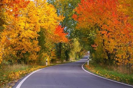 5 Best Fall Getaways for 2016