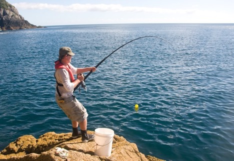 A Newbie's Guide to Fishing like a Pro