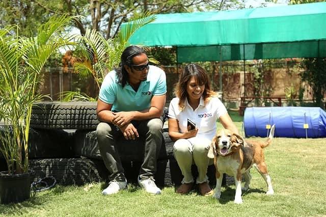 Top dog pet resort