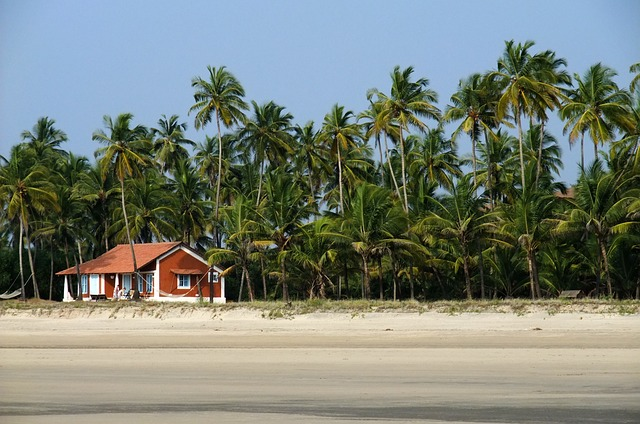 Things to see and do in Goa