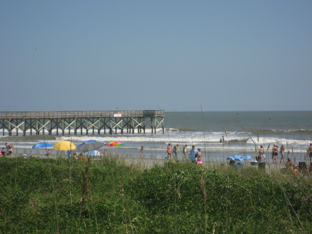 The Best Attractions in Isle of Palms