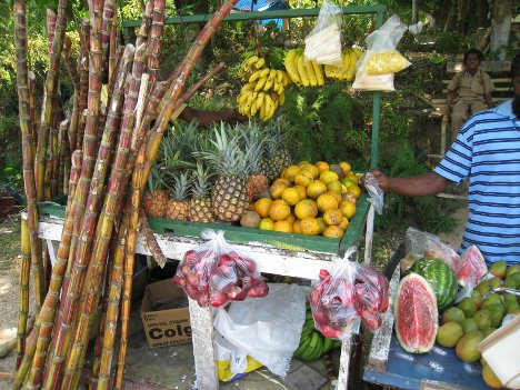Fruit - Jamaica