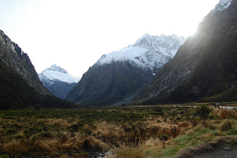 Monkey Creek in Fiordland National Park