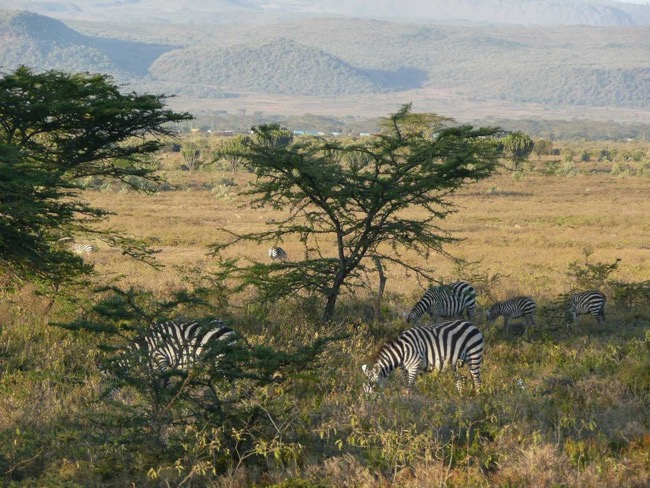 Perfect holidays in Africa: destinations you did not know