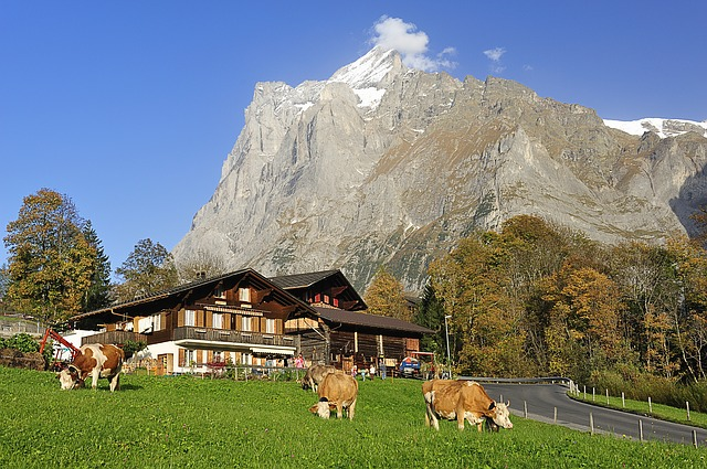 Top Incredible things to do in Grindelwald