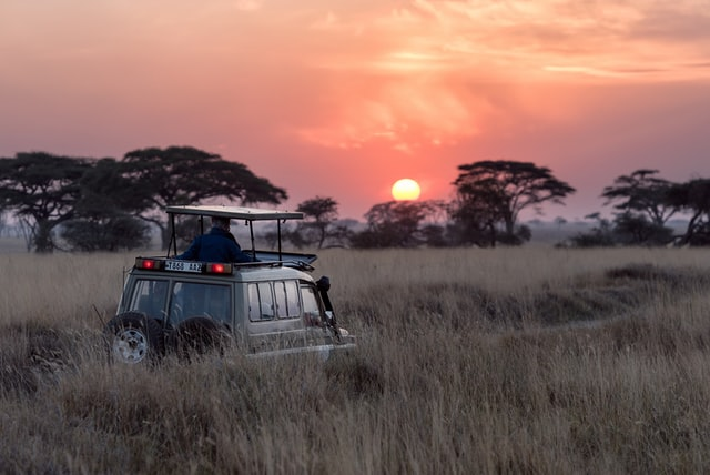 5 Things You Probably Didn't Know About Safari Holidays