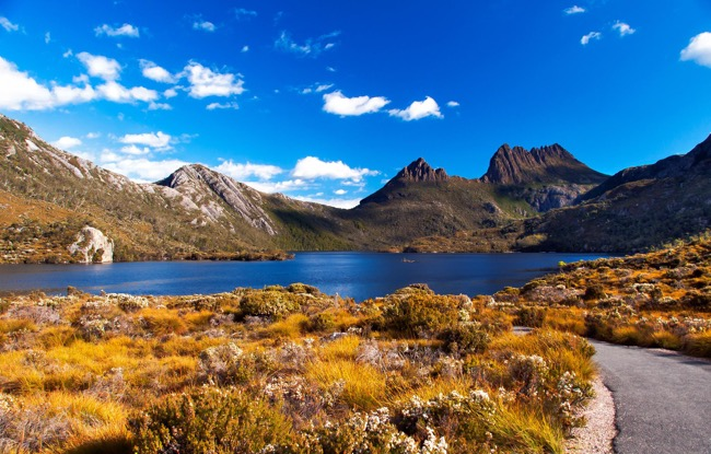 Experience Paradise Populated by Devils - Tasmania
