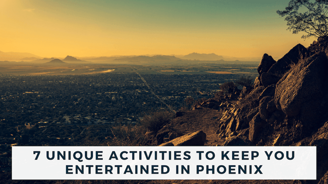 7 Unique Activities to Keep You Entertained in Phoenix