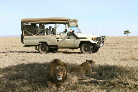 Serengeti Tours 4-x-4 - Tanzania