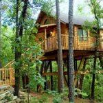 Tree House Hotels
