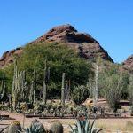 Plan a Weekend Trip to Phoenix, Arizona