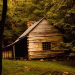 3 Essential Tips for Renting a Cabin