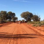 Driving Across Australia: What You Need to Know