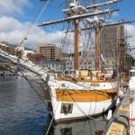 Around Hobart In 7 Days: Things To See And Do