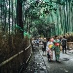 Japan 2019 Rugby World Cup – the perfect 10 day itinerary
