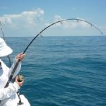 3 Reasons to Book a Local Fishing Charter on Your Next Trip to the Florida Keys
