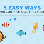 How to Save the Ocean